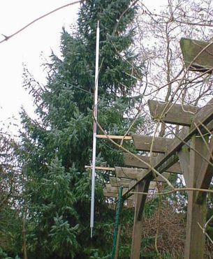 40m KGD antenna installed